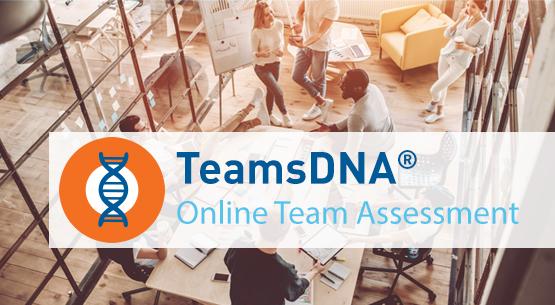Intro - TeamsDNA-Online-Team-Assessment.png