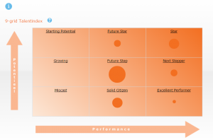 NL-HB-Talent-Analytics-P9-People-Qualities-9-grid-brochure-300x198.png
